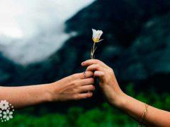 Красивым кажется все, на что смотришь с любовью. Цитаты про красоту