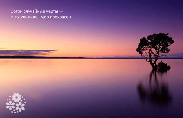 Цитаты про красоту природы