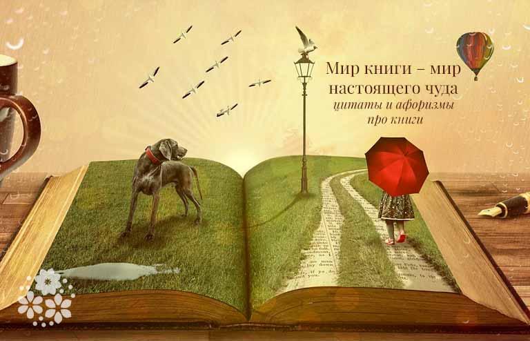 Цитаты и афоризмы про книги