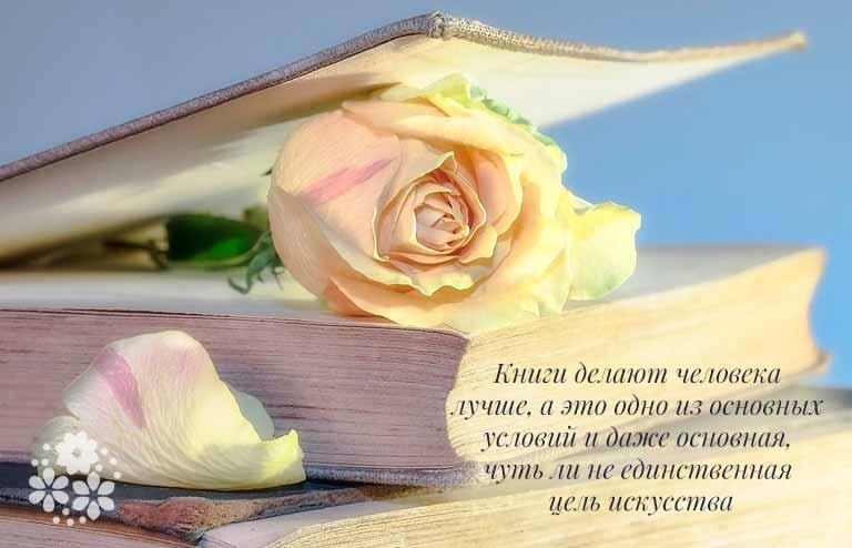 Цитаты о книгах и чтении русских писателей