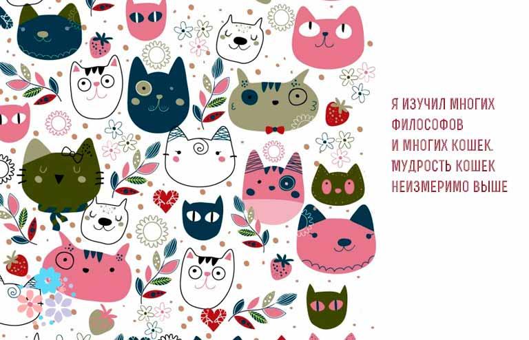 Цитаты и афоризмы про кошек и женщин