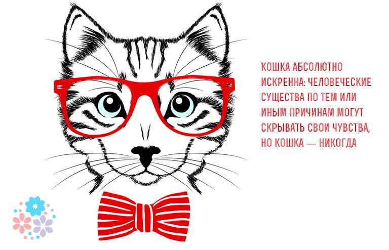 Цитаты и афоризмы о кошках великих людей
