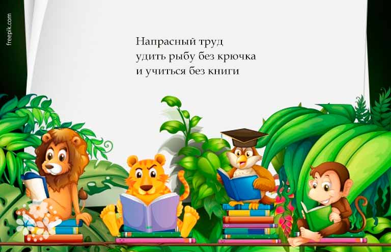 Пословицы и поговорки о книге для детей 3-4 класса