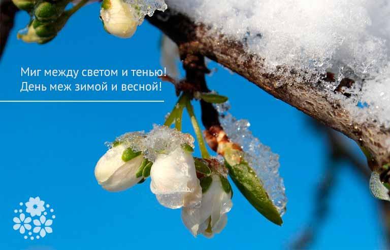 Красивые цитаты и афоризмы о весне