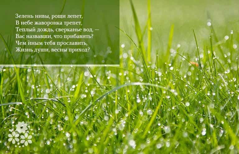 Красивые стихи о весне, о начале весны