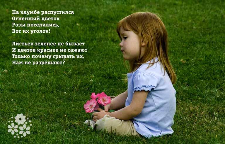 Стихи про розу для детей