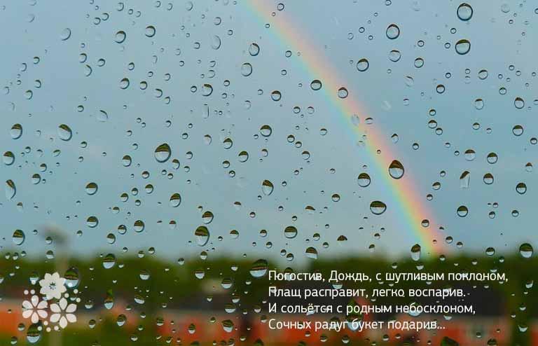 Пословицы бежал от дождя попал в ливень