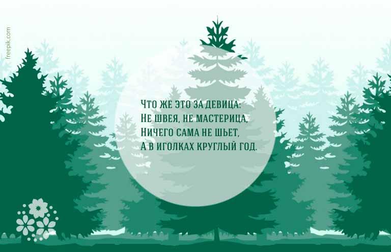 Загадки о деревьях для детей