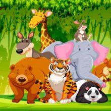 Загадки про лесных зверей и домашних животных