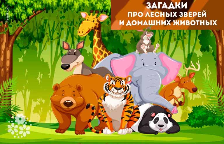 Загадки про лесных зверей