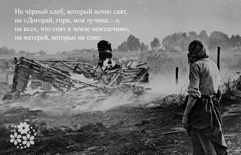 Евгений Евтушенко. Стихи о войне 1941-1945