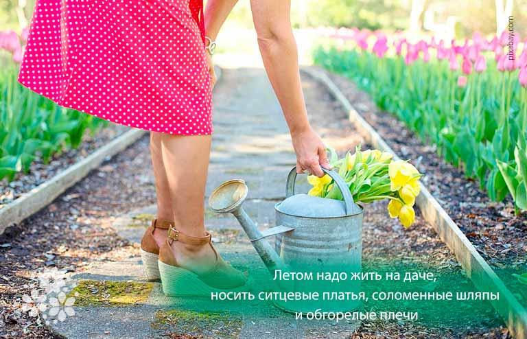 Красивые цитаты и афоризмы про лето