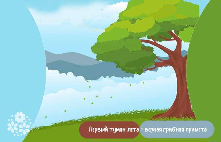 Приметы лета для детей-дошкольников