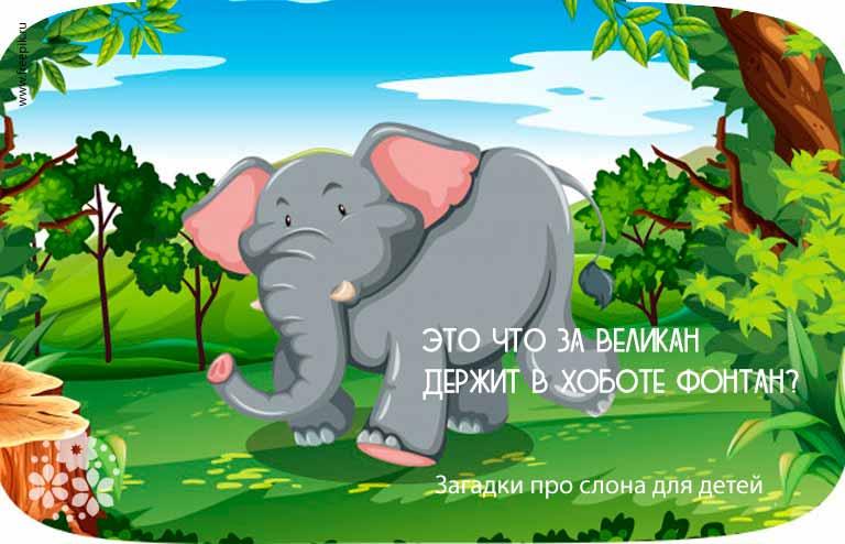 Загадки про слона для детей
