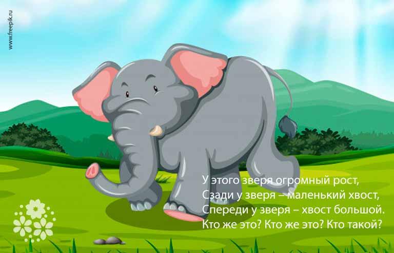 Загадки про слона для детей 7-8 лет с ответами