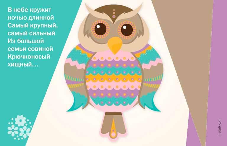 Загадки о белой сове