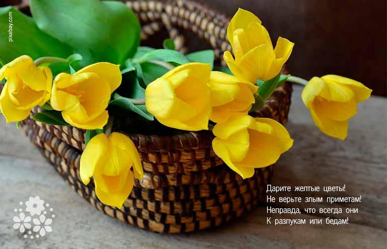 Красивые стихи о цветах