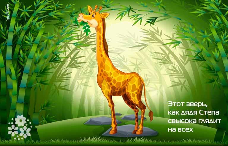 Загадки про жирафа для детей