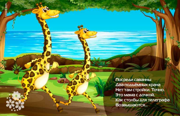 Загадки про жирафа для детей 5-6 лет