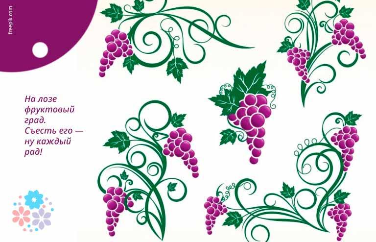 Загадки про виноград для детей 5-6 лет