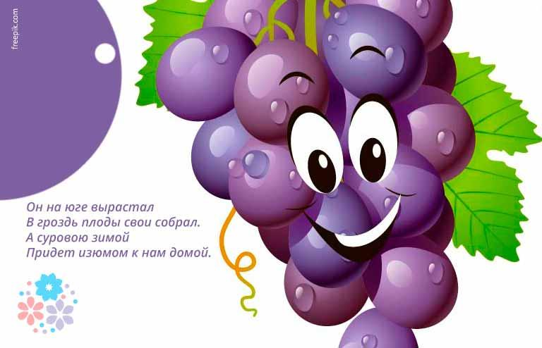 Загадки про виноград для детей 6-7 лет с ответами