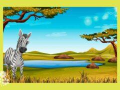 Что за коняшки — на всех тельняшки. Загадки про зебру для детей