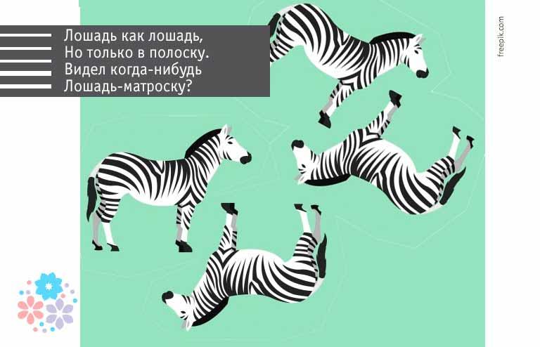 Загадки про зебру для детей 7-8 лет