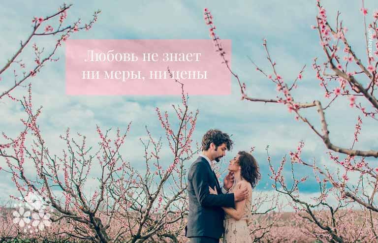 Короткие цитаты про любовь