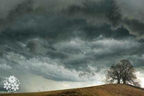 О, июнь грозовой! Напугай меня ветром и бурей! Стихи про грозу