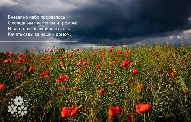Красивые стихи про грозу русских поэтов-классиков