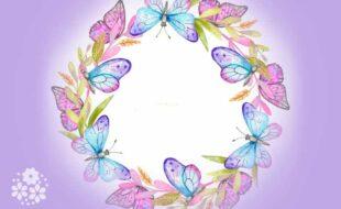 Одним воздушным очертаньем я так мила. Стихи про бабочку для детей