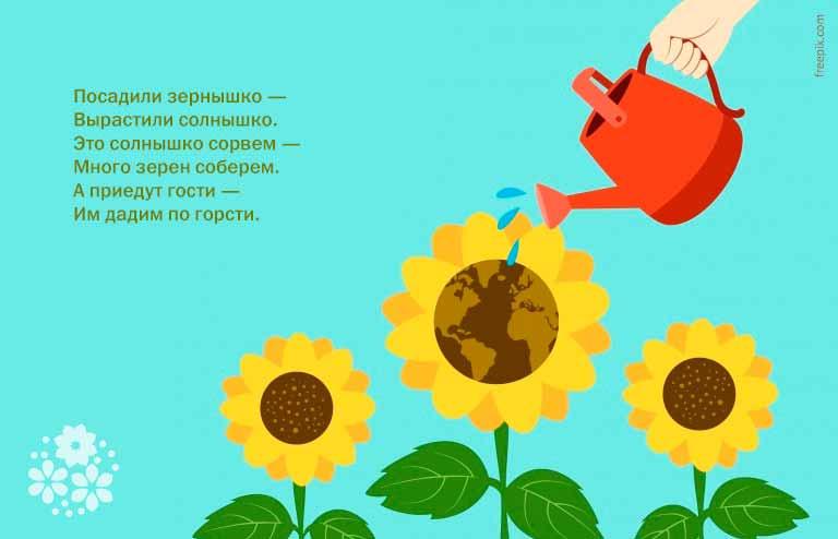 Загадки про подсолнух для детей 1-2-3 класса