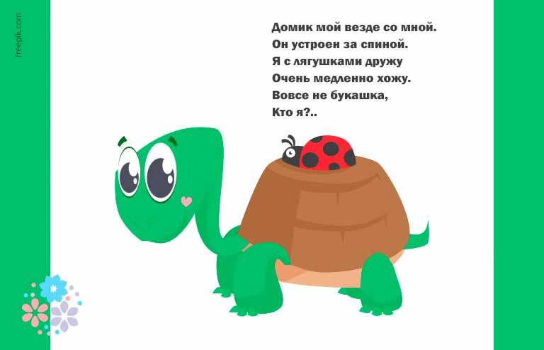 Загадки про черепаху для детей 5-6 лет
