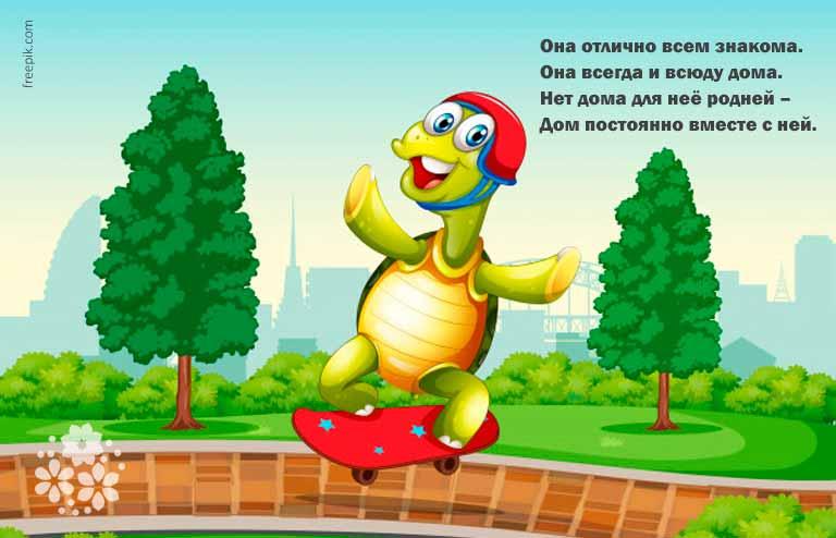 Загадки про черепаху для детей 7-8 лет