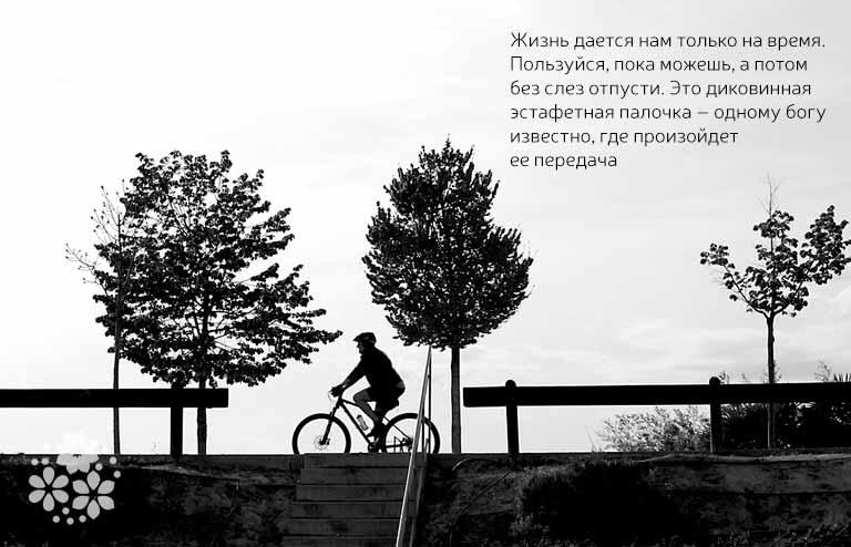 Цитаты из книги «Лето, прощай»