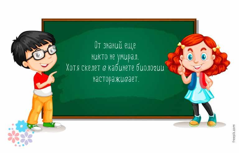 Смешные цитаты про школу и учебу