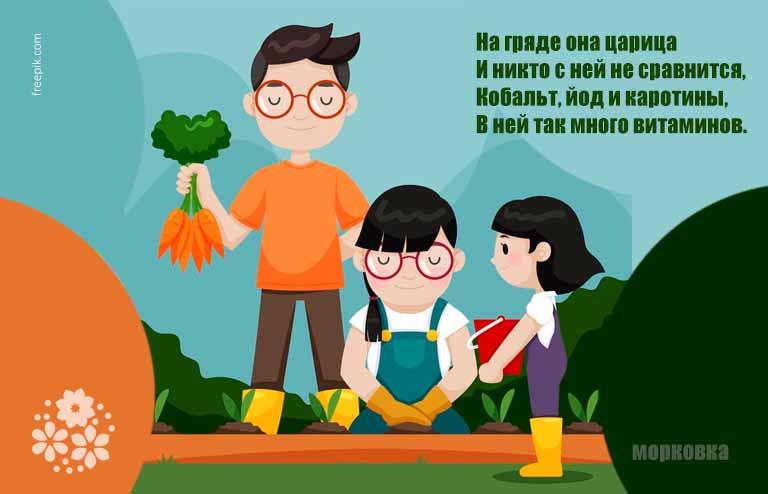 Загадки про морковь для детей 6-7 лет