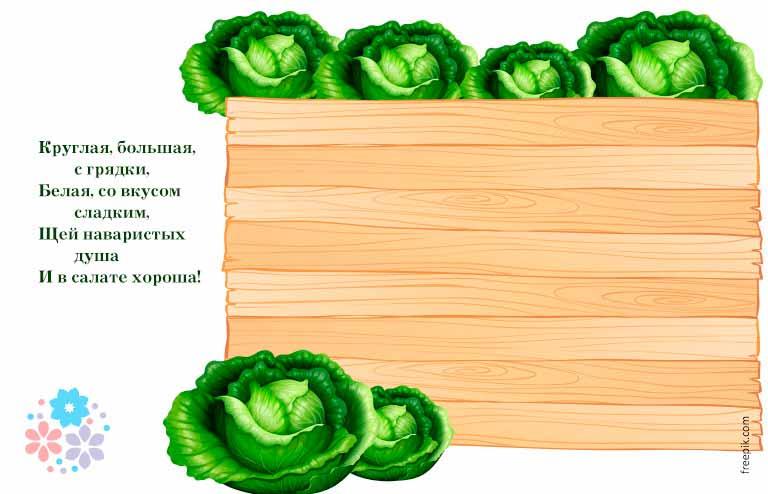 Загадки про капусту для детей 1-2-3 класса