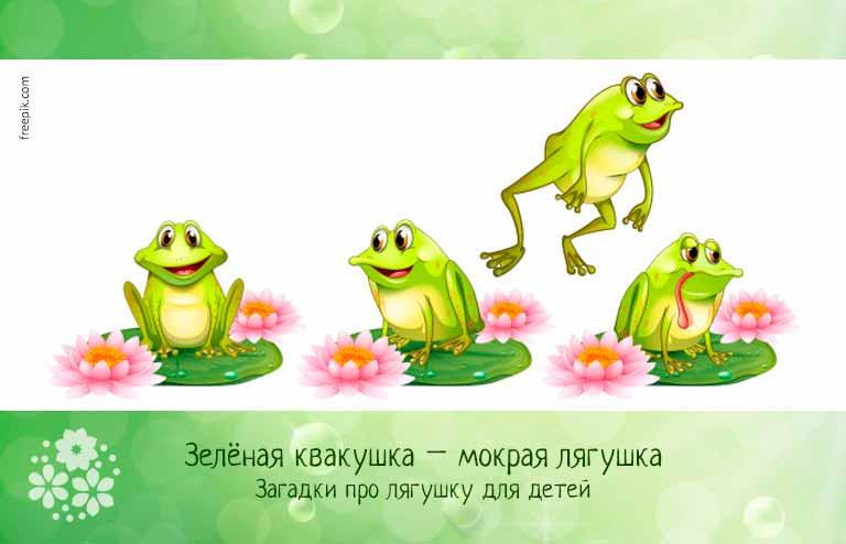 Загадки про лягушку для детей