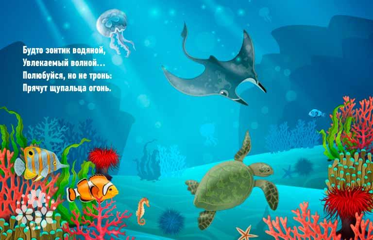 Загадки про обитателей морей
