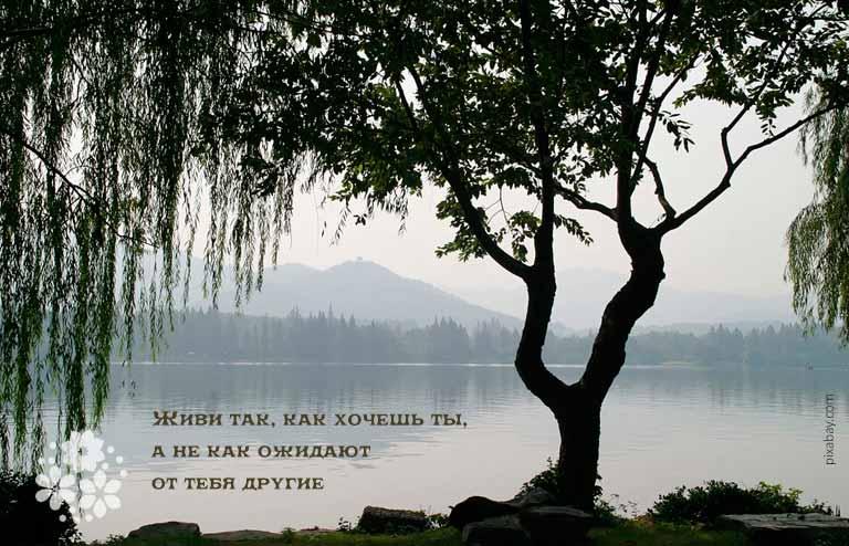 Цитаты Конфуция о человеке