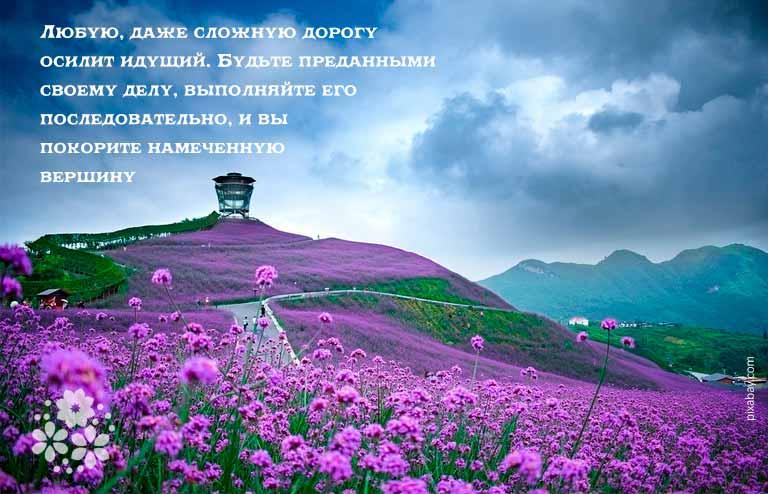 Цитаты Конфуция о государстве