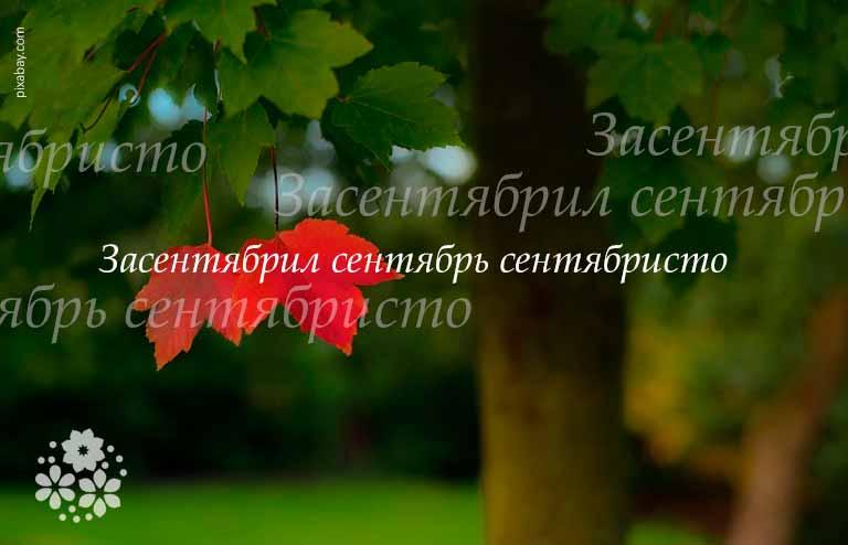 Цитаты, высказывания, афоризмы про сентябрь