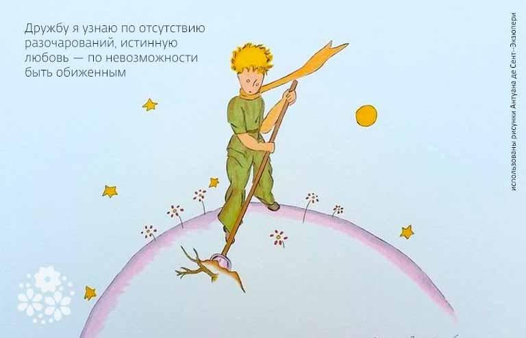 Цитаты из «Маленького принца» про дружбу