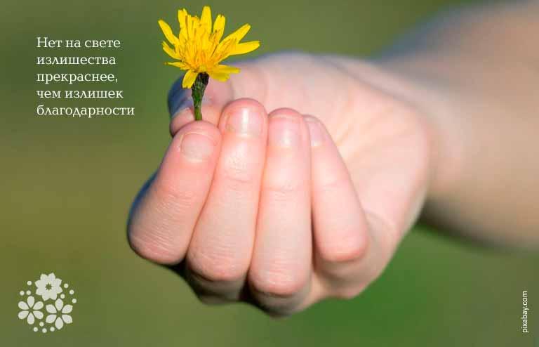 Цитаты и афоризмы про благодарность близким людям