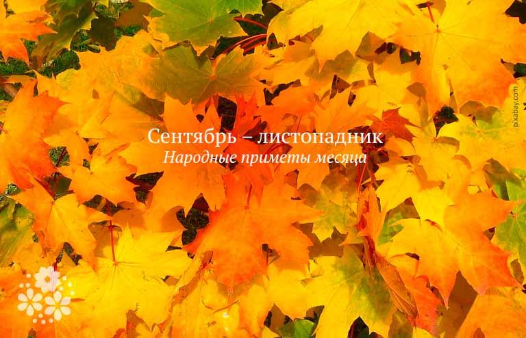 Сентябрь – листопадник. Народные приметы