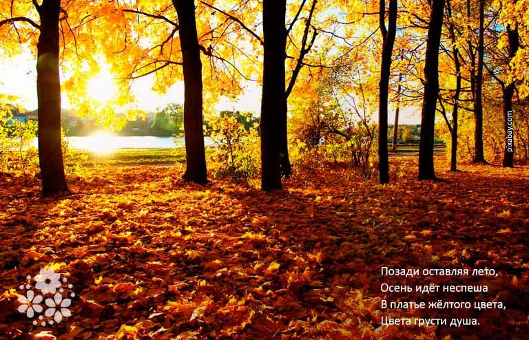 Короткие и красивые стихи про осень