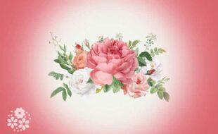 Изящен цветок – колючая ножка. Загадки про розу для детей
