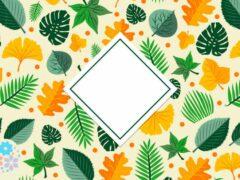 Осенний первый месяц подарит нам чудес. Загадки про сентябрь для детей