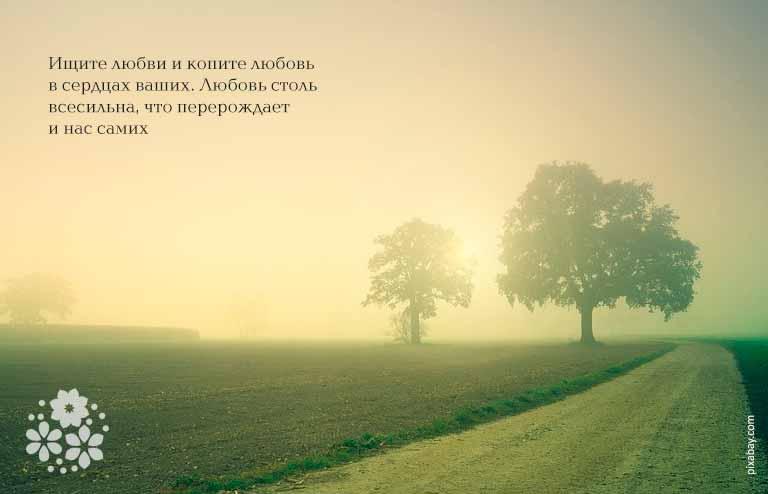 Цитаты Достоевского о человеке